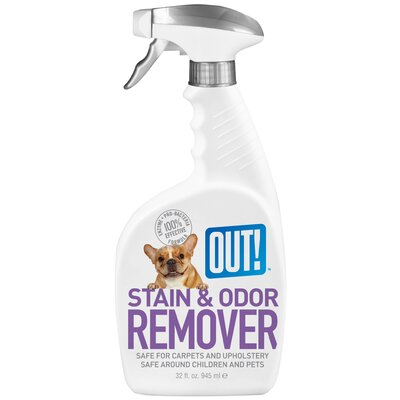 Out Dog Stain and Odor Remover