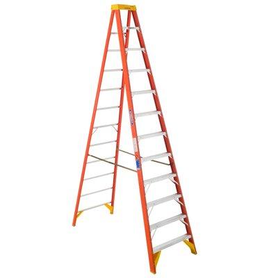 Werner Load Bearing Step Ladder