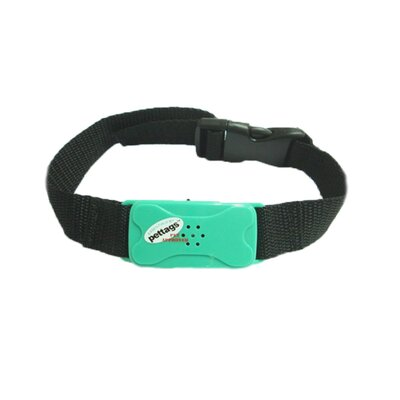 Pet Tag Pro No Bark Small Collar in Red