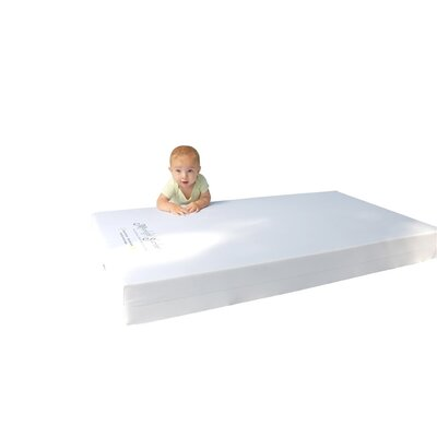 Moonlight Slumber Little Dreamer All Foam Crib Mattress
