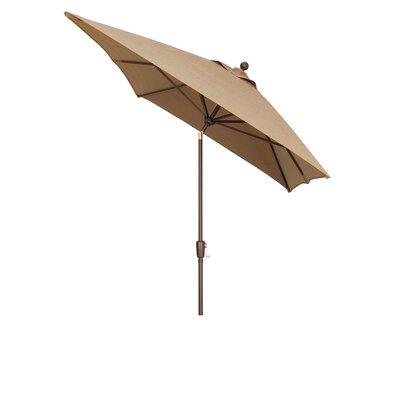10' Primo Market Umbrella