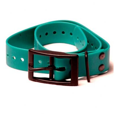 Tri-Tronics Collar with Square Buckle and Hardware