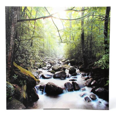 Oriental Furniture River of Life Photographic Print on Canvas