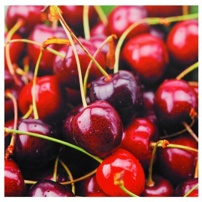"Oriental Furniture Cherries Canvas Wall Art - 19.75"" x 19.75"""