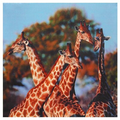 "Oriental Furniture Four Prairie Giraffes Canvas Wall Art - 19.5"" x 19.75"""