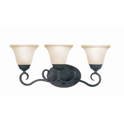 Woodbridge Lighting Jamestown 3 Light Bath Vanity Light