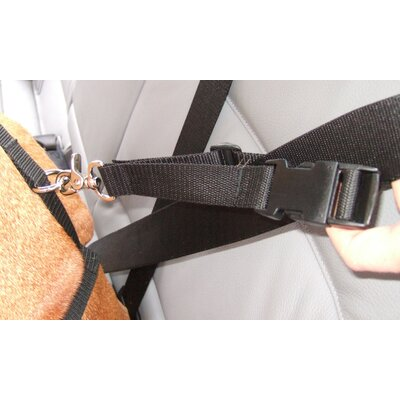 Bowsers Harness Attachment for Booster Car Seat