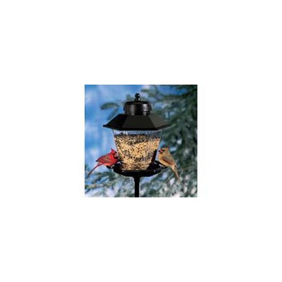 Artline Coach Lamp Bird Feeder