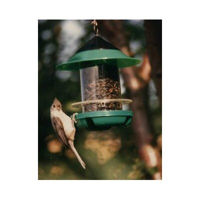 Becks Chickadee Feeder