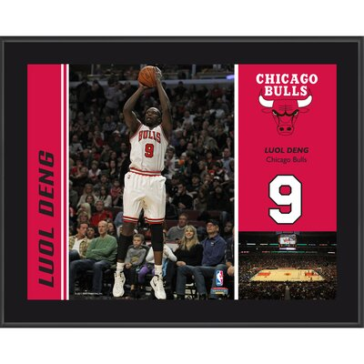 Luol Deng Chicago Bulls Sublimated Player Photo Plaque