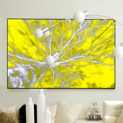 JORDAN CARLYLE Nature In The Sky Framed Graphic Art