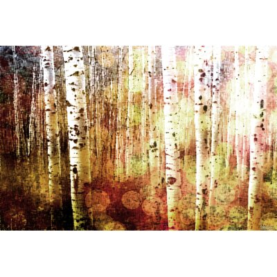 Aspen by Parvez Taj Graphic Art on Canvas