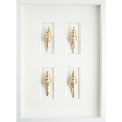 Mirror Image Home Spindle Shells Art