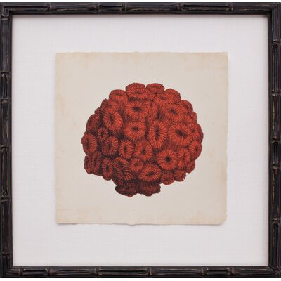 Mirror Image Home Mini Red Coral I Art