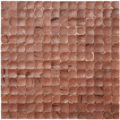 "Cocomosaic 16-1/2"" x 16-1/2"" Coconut Mosaic Tile in Brown Luster"