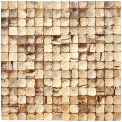 "Cocomosaic 16-1/2"" x 16-1/2"" Coconut Mosaic Tile in Natural Bliss"