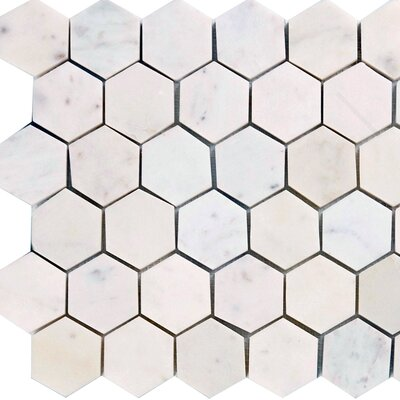 "Epoch Architectural Surfaces 12"" x 12"" Polished / Honed Hexagon Marble Mosaic in Italian Venatino"