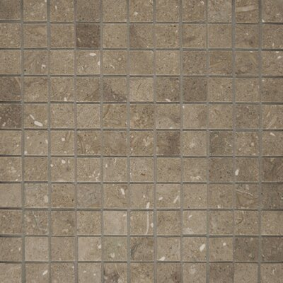 "Epoch Architectural Surfaces 12"" x 12"" Tumbled Limestone Mosaic in Seagrass"