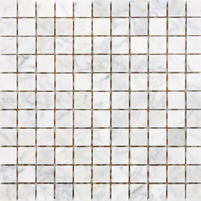 "Epoch Architectural Surfaces 12"" x 12"" Polished / Tumbled Marble Mosaic in White Carrara"