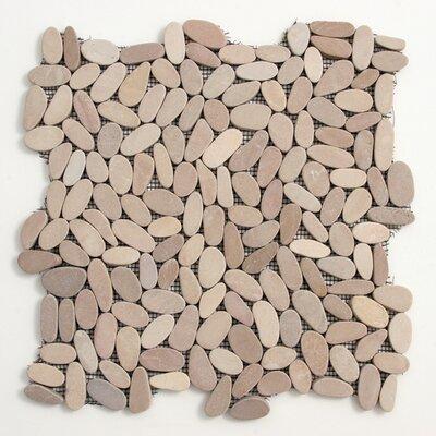 Decorative Pebbles Random Sized Interlocking Mesh Tile in Madura Sands