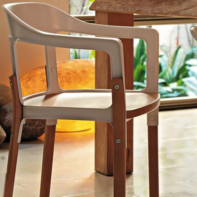 Magis Steelwood Dining Arm Chair