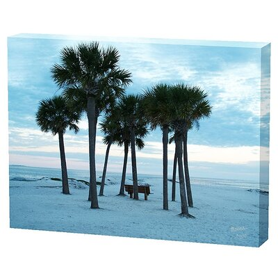 Menaul Fine Art Beach Trees Limited Edition Canvas - Scott J. Menaul