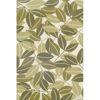 Duracord Outdoor Rugs Sawgrass Mills Para Green Rug