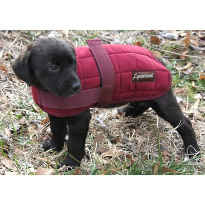 ABO Gear Quilted Dog Coat