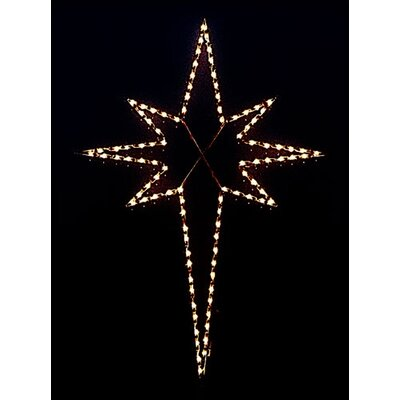 Holiday Lighting Specialists Large Star of Bethlehem