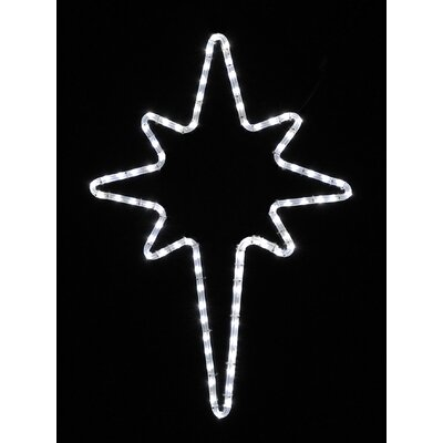 Holiday Lighting Specialists Small Star of Bethlehem Led Rope Light