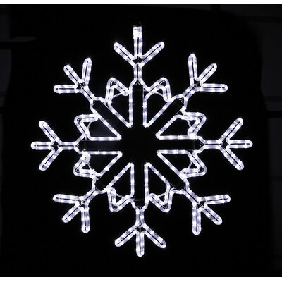 Holiday Lighting Specialists Twinkle Glow Snowflake Rope Light