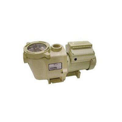 IntelliFlo Pump 230V