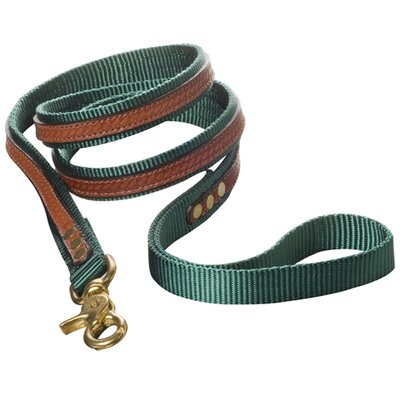 <strong>Woofwerks</strong> Cooper with Antique Leather Overlay Dog Leash