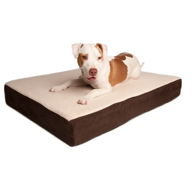 Great Paw Triple Support Orthopedic Dog Bed