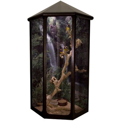 NuAge Cage Kozy Corner Wall Mounted Bird Cage with a Vision Front Panel