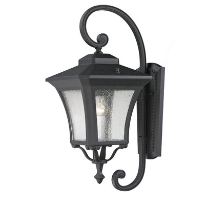 Z-Lite Waterdown 1 Light Outdoor Wall Lantern