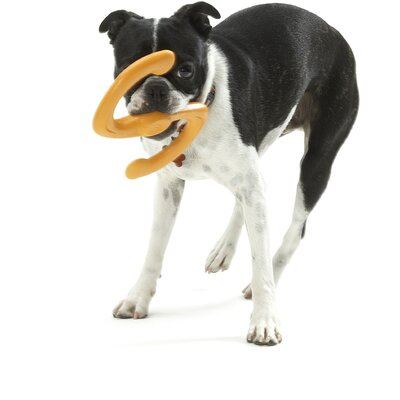 West Paw Design Zogoflex™ Bumi Dog Toy