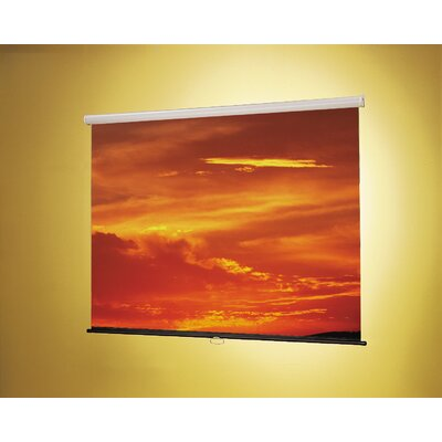 Claridge Products Matte White: Nova Wall Mounted Screen