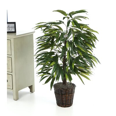 Vickerman Deluxe Artificial Potted Natural Mango Tree in Basket