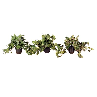 Vickerman Co. Floral Medium Artificial Potted Assorted Plants in Green (Set of 3)