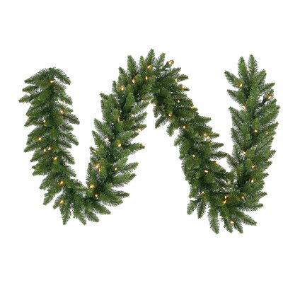Vickerman Co. Camdon Fir 50' Garland with LED Lights