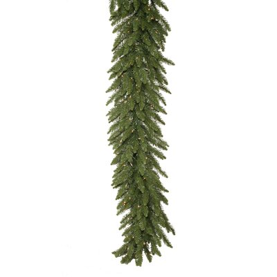 Vickerman Co. Camdon Fir 50' Garland with 400 Clear Lights