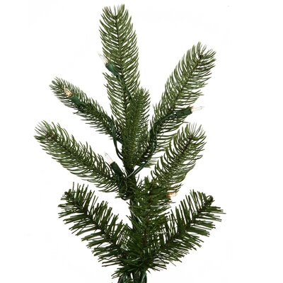 Vickerman Co. Black Hills Spruce 6.5' Green Artificial Christmas Tree with 500 Clear Lights with Stand