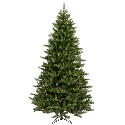 Vickerman Co. Black Hills Spruce 6.5' Green Artificial Christmas Tree with 500 Multicolored Lights with Stand