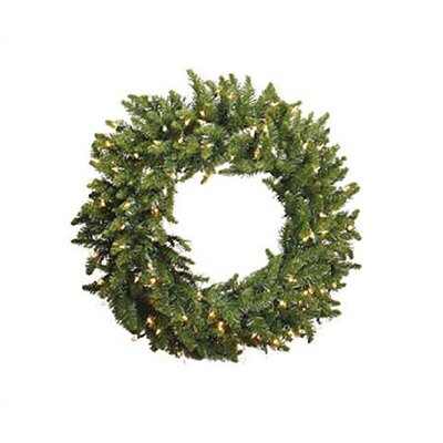 Vickerman Camdon Fir Wreath