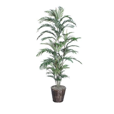 Vickerman Co. Deluxe Areca Palm Tree