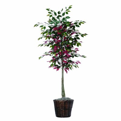 Vickerman Co. Designer 6' Artificial Potted Natural Capensia Tree in Green and Red