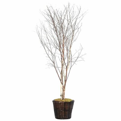 Vickerman Deluxe Artificial Potted Natural Winter Birch Tree in Basket