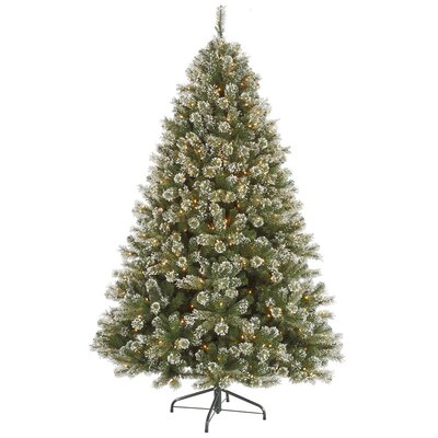 Vickerman Co. 5.5' Green Cashmere Pine Artificial Christmas Tree with 400 Dura-Lit Clear Lights and Frosted with Stand