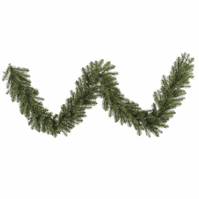 Vickerman Co. Colorado Spruce Garland